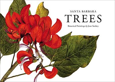 Santa Barbara Trees