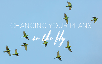 Changing Your Marketing Plan On The Fly